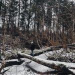 , Что делать в Латгалии зимой?, Туристический сайт Латгалии